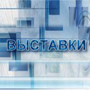 Выставки Дербешкинского